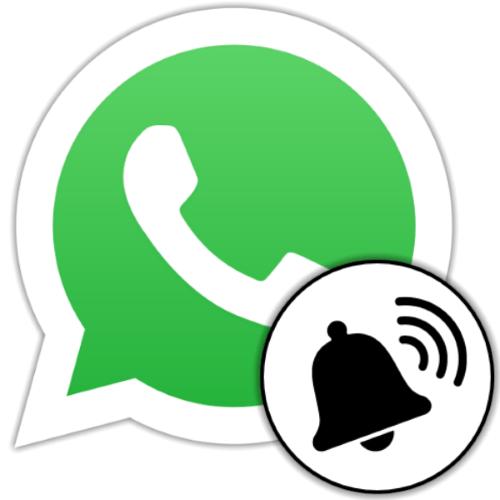 Активация уведомлений в WhatsApp на Android, iOS и Windows